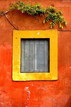 window detail, rome.
