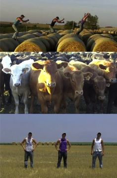 Music video: I'm Farming and I Grow It-- So funny!!