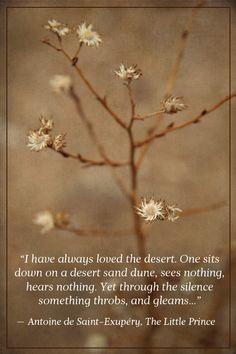 serenity in the desert....