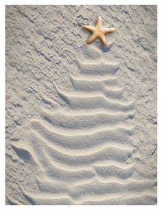 Christmas tree in the sand