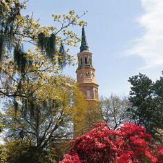 Beautiful scenery and great shopping make the Charleston area the perfect springtime destination.
