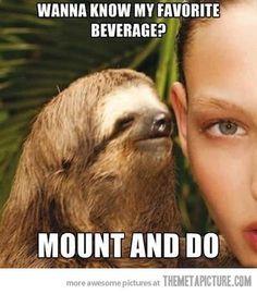 The rape sloth
