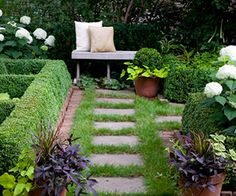 nice walkway, potato vine, dream garden, outdoor, front yard, brick edg, sweet potato, stone walkway, squar stone
