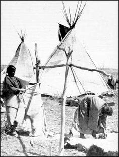 A very rare photo of Cheyenne women tanning buffalo hides (1870's). The woman to the left of the photo is softening a hairless buffalo hide on a rope, while the woman to the right is thinning a buffalo skin with a scraper. #GeorgeTupak