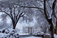 The Whitehouse-Frozen