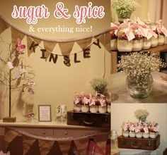 SUGAR & SPICE & EVERYTHING NICE BABY SHOWER