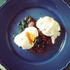 sautéed garlic mushrooms & spinach w/ poached eggs