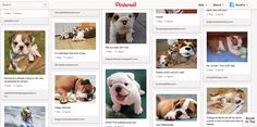 Pinterest for Business - 3 Companies That Have it Down!