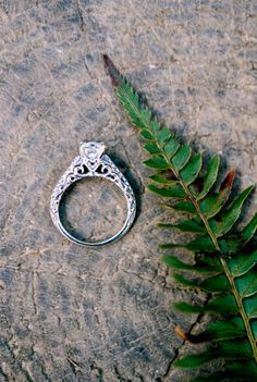 Rattlesnake Ledge Engagement Session: http://www.stylemepretty.com/washington-weddings/2014/09/03/rattlesnake-ledge-engagement-session/ | Photography: Amy Kiel - http://amykielphotography.com