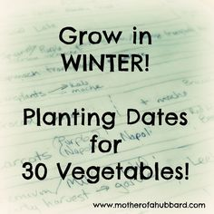 Winter Vegetable Planting Dates