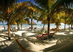 Casa las Tortugas (Isla Holbox)