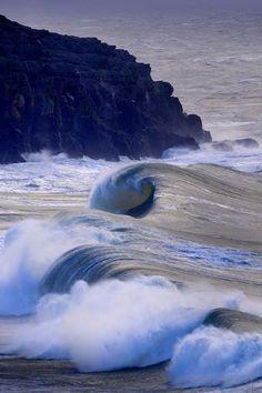 Ocean Curls