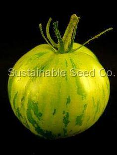 Green Zebra Tomato Seeds - Heirloom Seeds: Sustainable Seed Company
