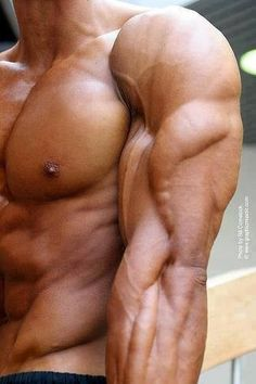 Incredible triceps!