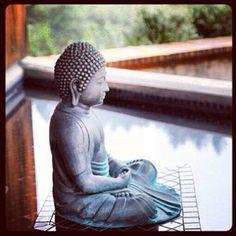 reflecting pool buddha at spirit rock