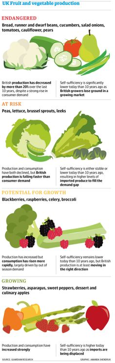 Britain's food self-sufficiency is in decline http://bit.ly/1oGcrOs @dpcarrington @AShendruk