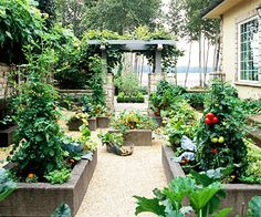 Several ideas for raised bed gardening