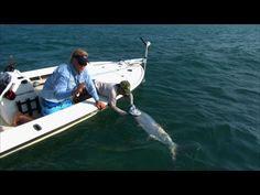 Fly fishing for tarpon in Islamorada, Florida Keys