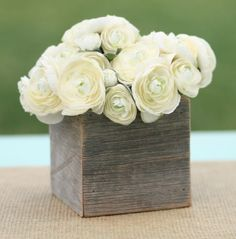love white runuculas