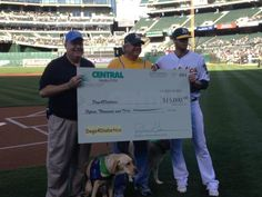 #Big #Check #Dogs4Diabetics #athletics