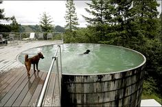 silo pool. magical deck - these people live on an old shipping boat in SF Bay - Reclaiming at it's finest!