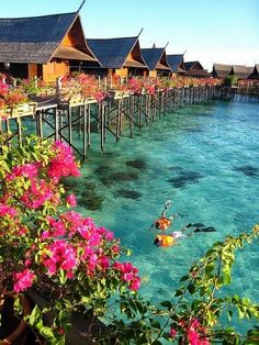 Tahiti, surrounded by beauty -