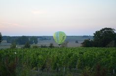 Hot air balloon lands close to the vines outside La Grande Maison yesterday evening #montgolfiere