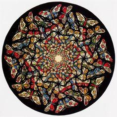 Butterfly (circle limit)  Escher
