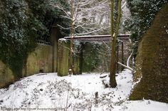 Victorian Inner Bridge Ruins under Snow, North Entrance, Western Heights, Dover, Kent, England, UK. Classic view of the drawbridge (left) and bridge combination that spans the South Tenaille Moat; the Tenaille, a monolithic block, is the brickwork on the right, road tunnel on left behind drawbridge beams. Part of Dover's Forgotten Fortress, a defense system begun during the Napoleonic Wars then continued in mid-Victorian era. Winter 2010 (February). See: http://www.panoramio.com/photo/33006447