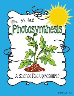 Fun foldable that introduces students to the process of photosynthesis.