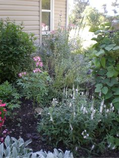 I love herb gardens