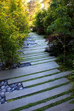 a walkway using staggered stone strips interspersed with low groundcovers and stone