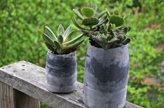 Succulent Planters made out of International Delight Creamer Bottles - #DIY #whatsyourid