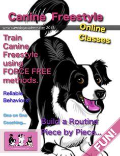 Online Canine Freestyle & Clicker Basics classes through Pam's Dog Academy... www.pamsdogtraining.com