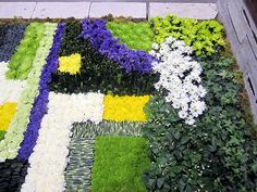 "The gorgeous ""floral"" carpet created by The Garden Club of Toronto at Canada Blooms 2012"