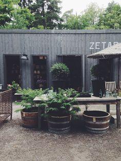 Beautiful Back yard country style - mixed with ubarnism - RealPalmTrees.com #REalPalmTrees Zetas Finsmakarens Trädgård I pejper.se