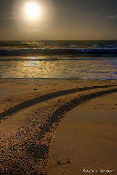Tyre tracks on the beach, Costa de la Luz, Spain
