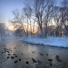 35PHOTO - Андрей Житков - Январским вечером..