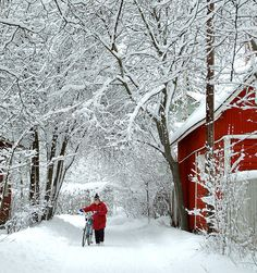 Winter Wonderland: Finland - I miss being in Finland soooo much!