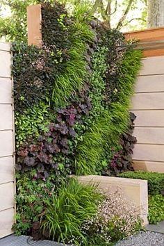 Living wall. #Vertical #Garden