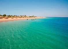 need to camp at Nuweiba