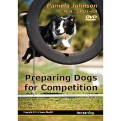 Tawzer Dog Preparing Dogs for Competition