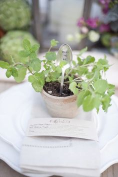 potted mind #weddingfavors  - Christa Elyce - http://ruffledblog.com/eco-friendly-garden-wedding-ideas/