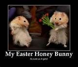 Image detail for -Easter Funny Jokes