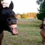 Horse Laughing with Girl!