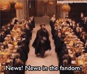THE HARRY POTTER FANDOM RIGHT NOW