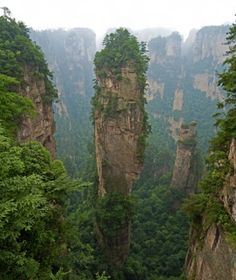 Zhangjiajie Stone Forest in China (aka Avatar Mountains)