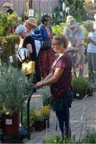 Fall is planting season for natives in Santa Barbara