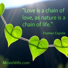 """""""Love is a chain of love, as nature is a chain of life.""""  - Truman Capote"""