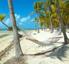 Islamorada Florida Keys, Island Life